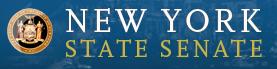 new york state senat