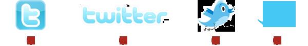 Twitter Logo Guideline