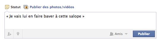 facebook insulte
