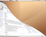 beryl linux