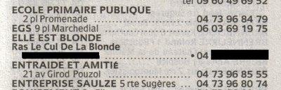 Annuaire Pages Jaunes Ras le cul de la blonde