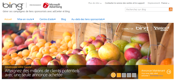 Microsoft Pub Online