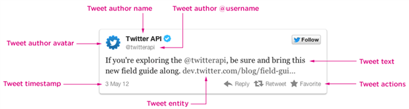 Twitter Display Guideline