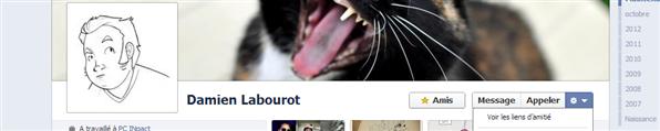 Facebook Liens d'amitiés