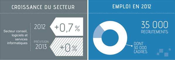 Syntec numerique 2012 2013