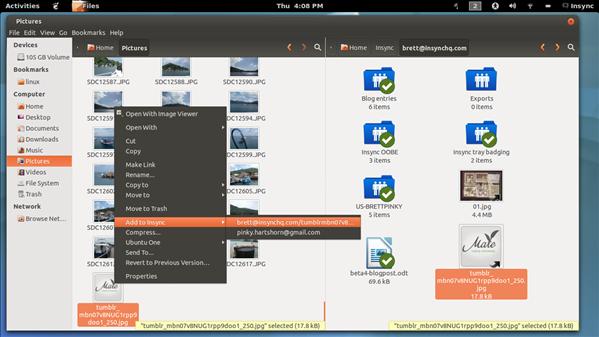 InSync Simlink Linux
