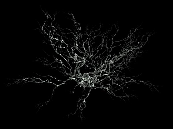 Neurones GNU GPL - Nicolas P. Rougier