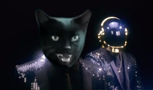 Cat Lucky Daft Punk