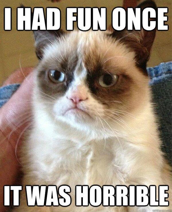 Grumpy Cat Meme Fun