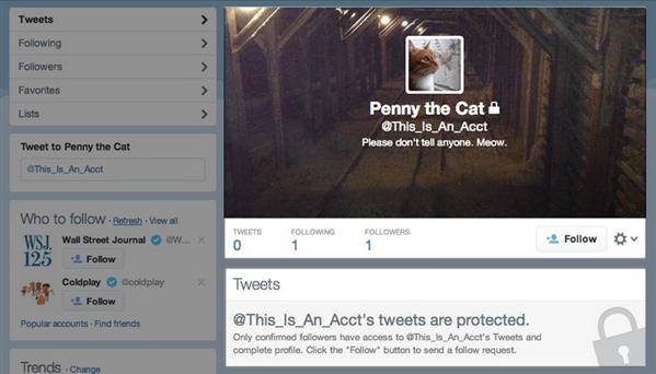 Twitter compte protégé