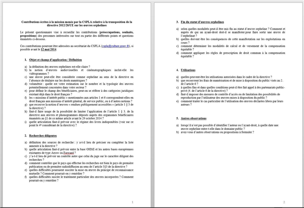 questionnaire oeuvres orphelines CSPLA