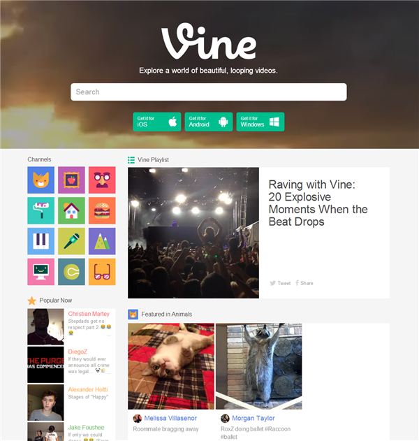 Vine Site Web