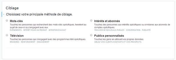 Twitter Ciblage Publicité