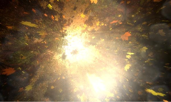 Autumn WebGL