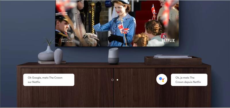 Google Home Netflix