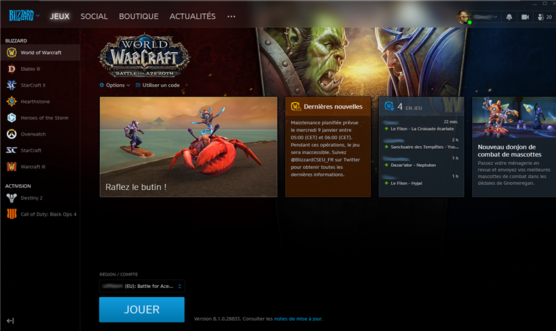 Battle.net Interface
