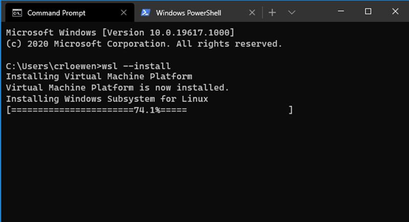 Microsoft Windows 10 WSL 2 Install