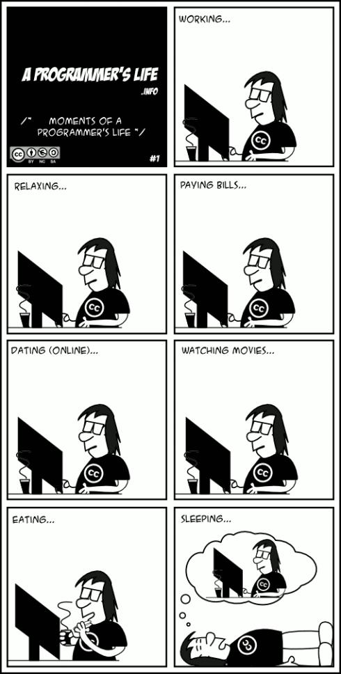 Programmeur image LIDD