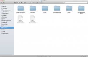 SkyDrive Dossier OS X
