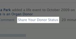 facebook don organe