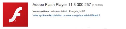 Flash 11.3