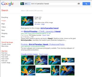 Google recherche par image