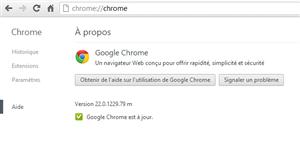 Chrome 22