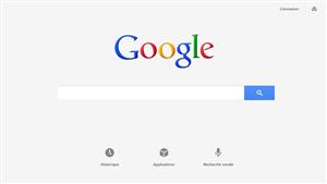Google Application Windows 8
