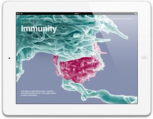 Apple iPad avec ecran retina