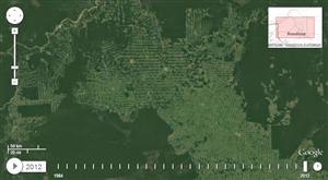 Amazonie Timelapse