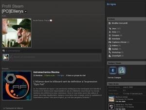 Steam Profil old