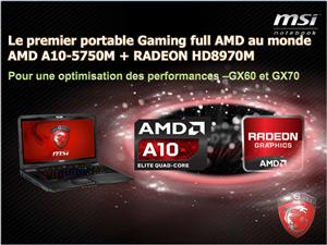 MSI Full AMD GX 60 Richland