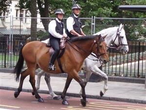 police uk royaume uni