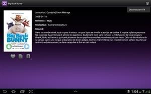 Chromecast DS Video