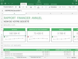 excel office ipad