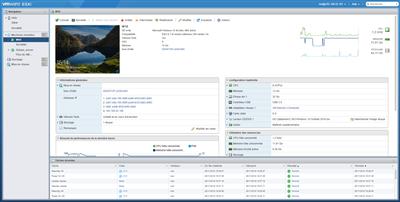 VSphere Hypervisor ESXi Multi VM