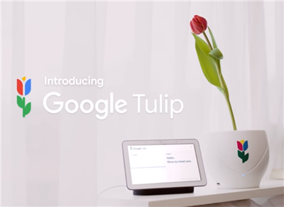Google 1er avril 2019