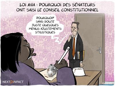 Loi Avia : pourquoi des sénateurs ont saisi le Conseil constitutionnel