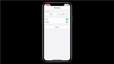 Apple DNS DoT DoH