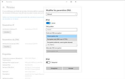DNS over HTTPS DoH Windows 10