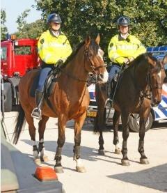 police cheval de troie