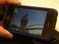 iphone silverlight