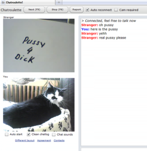 chatroulette chat video best of