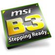 MSI Logo B3