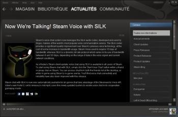 steam silk skype