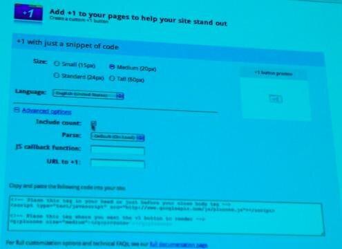 Google PlusOne interface webmaster