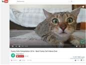 Connaître le temps passé devant des vidéos YouTube