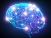 Project Trillium : Arm dévoile ses plans dans le domaine du machine learning
