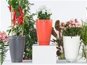 Pot de fleur connecté Parrot Pot à 29 €