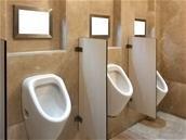 Des députés veulent interdire les écrans publicitaires dans les toilettes